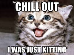 Chill Out Meme - chill out i was just kitting happy kitten meme generator