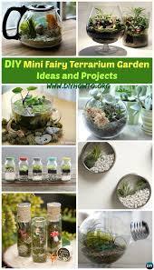 Mini Water Garden Ideas Diy Mini Terrarium Garden Ideas