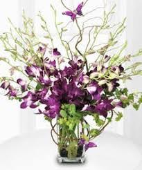 orchid flower arrangements orchid flower arrangements allen s flower market