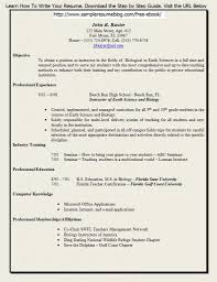 Cio Resume Examples by Curriculum Vitae Shannon Figa Example Of A Good Cover Letter For