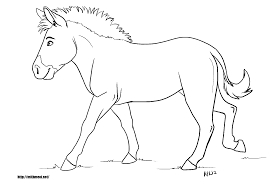 zebra coloring page without stripes and eson me