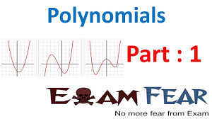 maths polynomials part 1 introduction to polynomials cbse class