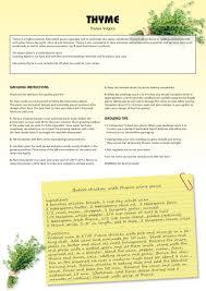 seed kits herbs instructions totalgreen holland