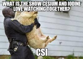 Csi Meme Generator - arrested pig weknowmemes generator