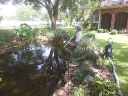 koi pond and water feature maintenance austin central texas tx