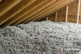 tap insulation professional pest exterminators bell termite