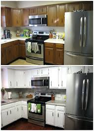 Diy Gel Stain Kitchen Cabinets Kitchen Cabinets Gel Stain Or Paint For Kitchen Cabinets Gel