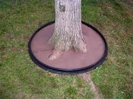 dewitt tree ring planter