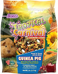 amazon com kaytee fiesta guinea pig food pet food pet supplies