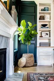 home design 25 best ideas about indoor planters on pinterest