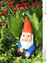 garden gnome stock image image 14105451