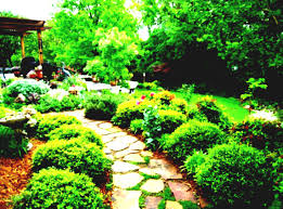 landscape ideas for small low budget landscaping pictures backyard