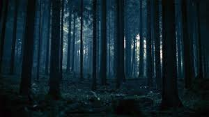 cemetery instrumental soundtrack halloween background sounds ambient horror music red space my dark forest pinterest