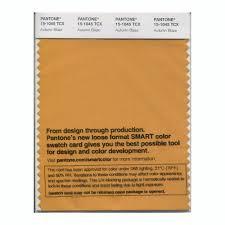 golden orange color buy pantone smart swatch 15 1045 autumn blaze