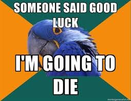 Paranoid Parrot Memes - all the theatre memes