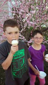 the barri more than one barrus haircuts and ice cream