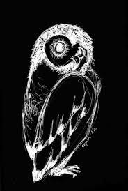 owl u2013 equin co designs