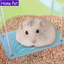 Hamster Bed Search On Aliexpress Com By Image