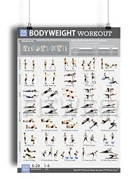home work out plans amazon com bodyweight exercise poster total body fitness