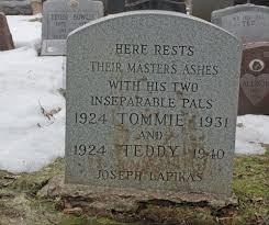 headstones for dogs best 25 headstone inscriptions ideas on memorial