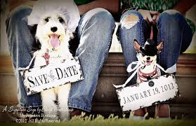 save the date signs save the date signs dog signs engagement signs photo props