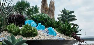 image gallery indoor rock garden designs