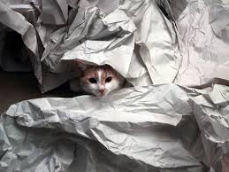 where can i buy packing paper how to pack a kitchen packing plates glassware more oz