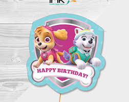 pink paw patrol party skye paw patrol birthday