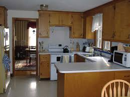 cheerful kitchen remodeling on a budget with new cabinet door and