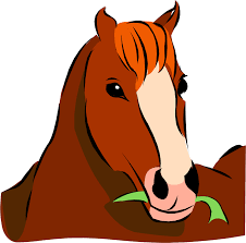 cartoon image of horse