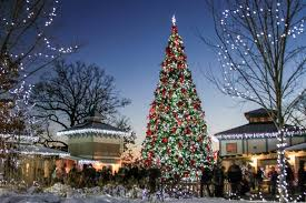 festival of lights cincinnati zoo 2017 get your discounted tickets for the festival of lights today
