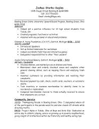 Sales Coordinator Job Description Resume by Bgsu Student Joshua Storks Sayles Resume 2
