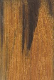 desert ironwood the wood database lumber identification hardwood