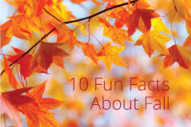 fall autumn 10 fun facts about fall taskeasy blog