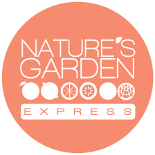 fruit delivery dallas organic food home delivery nature s garden express