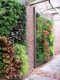 garden wall decoration ideas landscape contemporary with succulent
