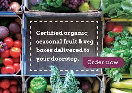 organic fruit delivery organic fruit vegetables shop box delivery organic collective