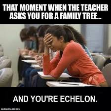 Exles Of Internet Memes - 51 best my family echelon images on pinterest families march