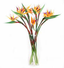flowers free shipping 5pcs lot bird of paradise pu real touch flower free shipping