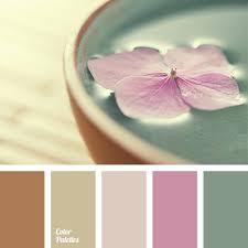 beige colour shades of beige colour color palette ideas