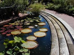 Michigan Botanical Gardens Chicago Botanic Garden In Autumn