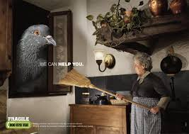 lexus canada helpline fragile print advert by milc we can help you bird ads of the