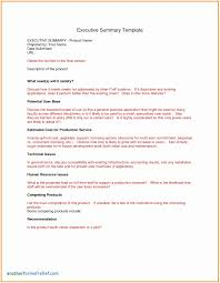 exle executive resume executive summary resume sles beautiful test summary report excel