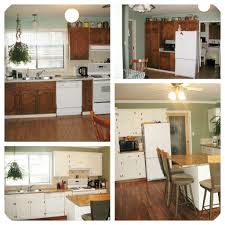 painted black kitchen cabinets before and after refinish kitchen cabinets ideas get moody with dark repaint