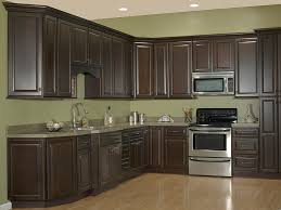what paint color looks with espresso cabinets jsi s quincy one wall kitchen set espresso