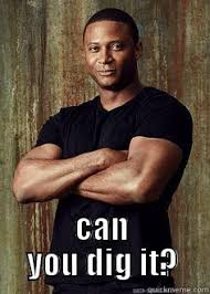 Can You Dig It Meme - dig it diggle quickmeme