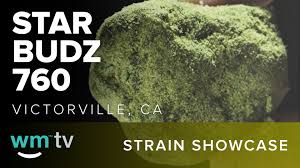 Colorado Weed Maps by Strain Showcase Moon Rocks From Star Budz 760 Medical