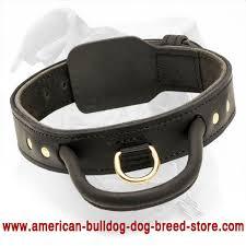 Comfortable Dog Collars 2 Ply Leather Dog Collar For American Bulldog C33 1012 2 Ply