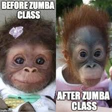 Funny Zumba Memes - you know that feeling zumba fun pinterest zumba quotes