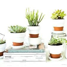 white ceramic pots for indoor plants 4 super white ceramic wall